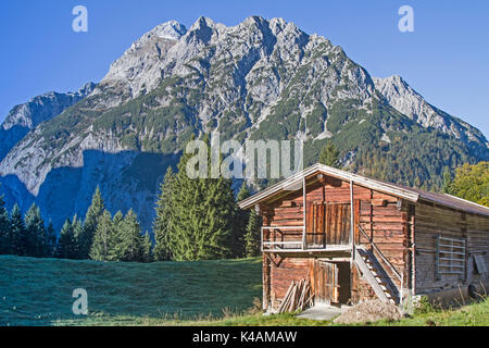 Falk Group In Karwendel With Dead Larch - Stock Image