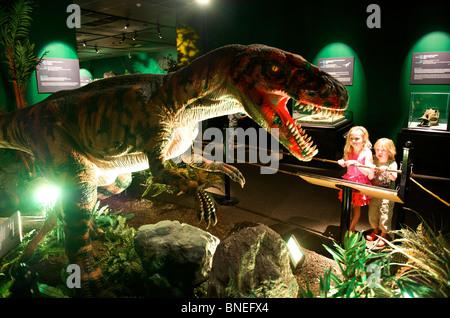 Sculpture of Velociraptor at Witte museum housing Dinosaur exhibition in Texas San Antonio, USA - Stock Image