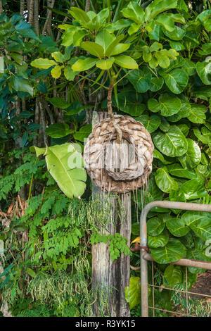 Hanalei, Hawaii, Kauai, gate - Stock Image