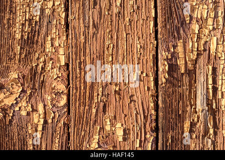 Flaking paint on brown wood with peeling flakes and specks of old paint. Rough peeling painted surface in dark wood - Stock Image