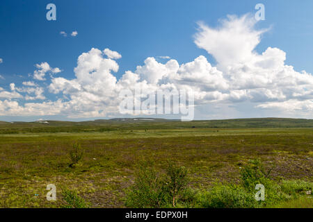 Picture of finnmarksvidda, with big clouds - Stock Image