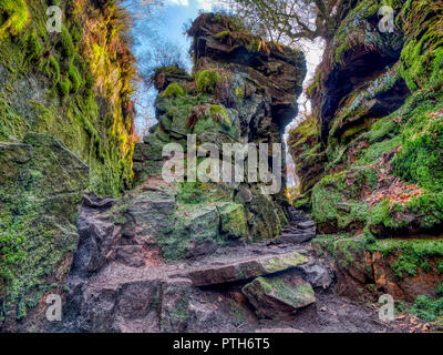 Lud's Church the deep Millstone Grit moss-covered chasm full of history, myths & legends near Gradbach in the Peak District National Park, Staffordshi - Stock Image
