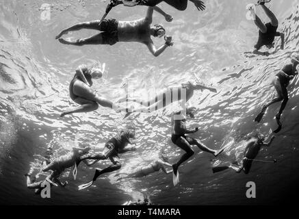 Underwater Photography of snorkelers / tourists swimming in the Red Sea, Abu Dabbab, Egypt. - Stock Image
