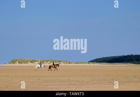 horse riding on holkham beach, north norfolk, england - Stock Image
