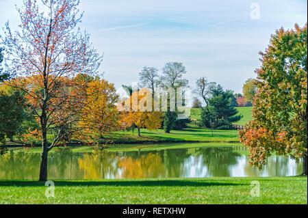 Autumn scene and pond - Stock Image