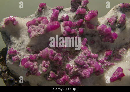 Ruby in marble. Geological Museum of China. - Stock Image