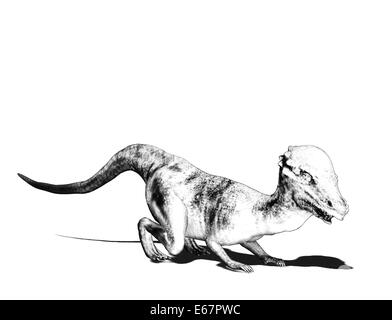 Dinosaurier Pachyosaurus / dinosaur Pachyosaurus - Stock Image