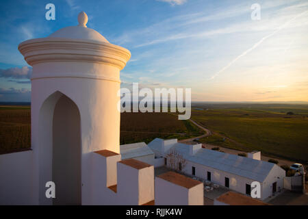 The sentinel and view over the vineyards of the Torre de Palma Wine Hotel - Stock Image