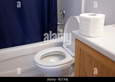 In a bathroom beside the shower and sink, a toilet and roll of toilet paper sit - Stock Image
