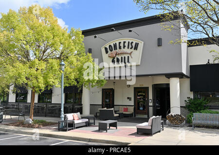 Front exterior entrance of Bone Fish Grill showing the corporate logo and sign in Montgomery, Alabama USA. - Stock Image