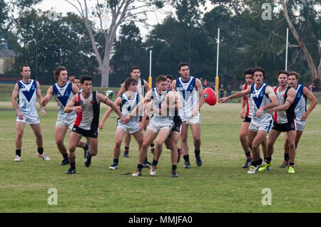 Australian Rules amateur football match at Princes Park, South Caulfield, Melbourne. The code originated in 19th century Melbourne. - Stock Image
