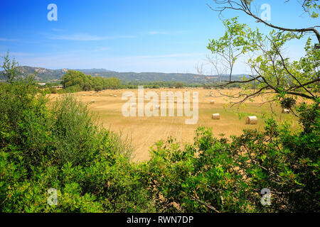 Countryside in Sardinia, Italy, Mediterranean Sea - Stock Image