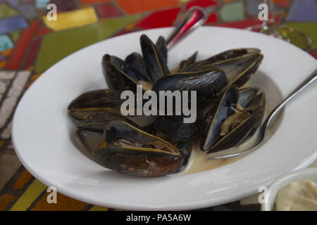 Freshly steamed mussels in white dish offer an appealing and healthy presentation in horizontal format - Stock Image