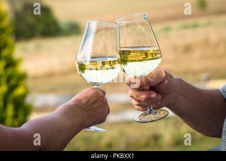 Cheers with white wine a garden with wine glasses reflecting beautiful nature - Stock Image