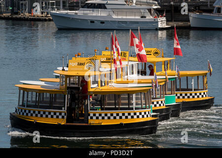 Victoria, Canada. 4th July, 2018. Tiny harbor taxi ferries perform a synchronized 'Ferry Boat Ballet' for crowds at the inner harbor during celebrations marking British Columbia Day August 4, 2018 in Victoria, BC, Canada. Credit: Planetpix/Alamy Live News - Stock Image
