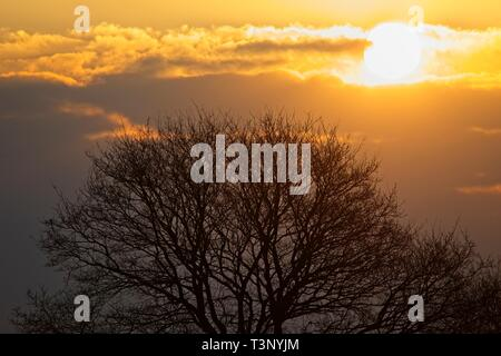 Hailsham, UK. 11th Apr, 2019. UK weather.The sun rises over the market town of Hailsham in East Sussex this morning with blue skies expected for the rest of the day.Hailsham, East Sussex, UK. Credit: Ed Brown/Alamy Live News - Stock Image