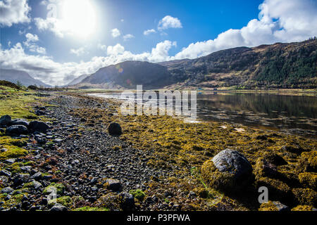The rocky shoreline of Loch Sunart in the Highlands of Scotland. View looking west - Stock Image