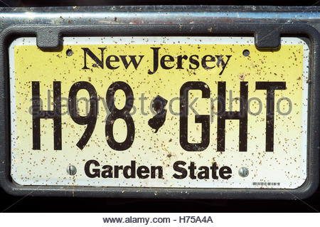 Bug splattered licence plate for a hire vehicle, New Jersey registered, USA. - Stock Image