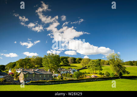 UK, Cumbria, Hawkshead, Near Sawrey, houses beside Stones Lane and Bank Wood - Stock Image
