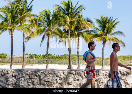 Miami Beach Florida Lummus Park man men walking palm trees sand coral wall oolite walkway swimming trunks swimsuit - Stock Image