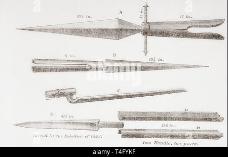 Fenian weapons, 19th century.  From The Illustrated London News, published 1865. - Stock Image