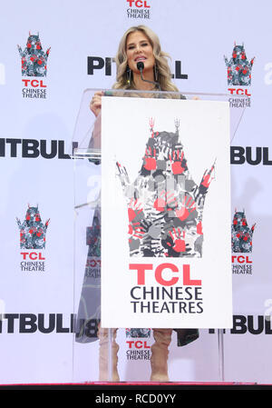 Pitbull is honoured with a hand and footprint ceremony at the TCL Chinese Theatre  Featuring: Ellen K Where: Hollywood, California, United States When: 14 Dec 2018 Credit: FayesVision/WENN.com - Stock Image