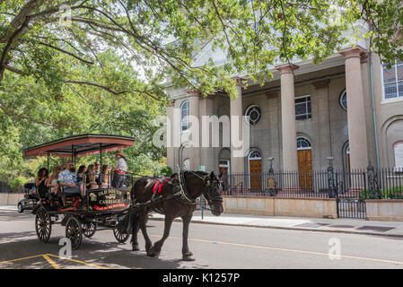 America, South Carolina, Charleston, horsedrawn carriage passing by the First Presbyteran Church in historic downtown - Stock Image