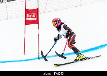 An amputee, missing her right leg, passing through a gate in a giant slalom race. - Stock Image