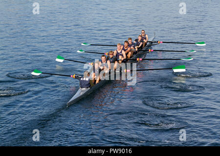 Copenhagen, Denmark, 13th October, 2018. The Danish Aarhus Students in the eight mix race in the 6,5 km international regatta, the Copenhagen Harbour Race, from Langebro in the inner harbour to the lock gate system in the South Harbour and back. Credit: Niels Quist/ Alamy Live News. - Stock Image