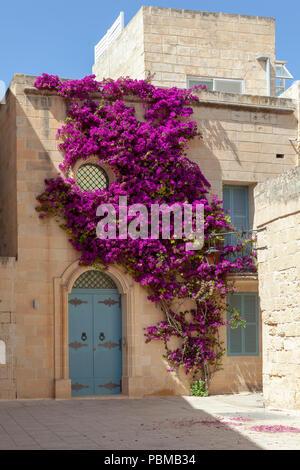 Sunny Rabat, Malta - Stock Image
