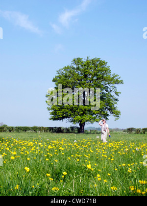 Spring river meadow with buttercups and tree and blue sky. Woman walking. Oxfordshire - Stock Image