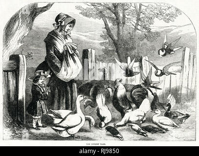 Woman and child feeding chickens in the poultry yard. - Stock Image