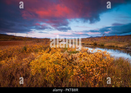 Dovre, Norway, September 15th, 2018. Autumn colors at Fokstumyra nature reserve, Dovre, Norway. Credit: Oyvind Martinsen/ Alamy Live News - Stock Image
