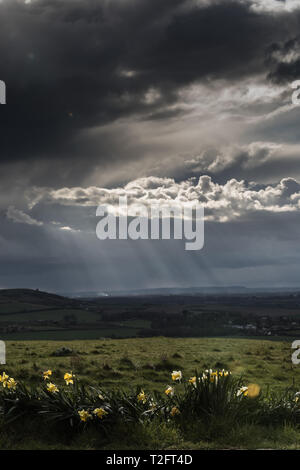 Chiltern Downs, UK. 2nd April, 2019. UK Weather, dark clouds and sunrays over the Chiltern Downs Credit: amanda rose/Alamy Live News - Stock Image