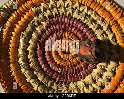 Red root used to dye the baskets made by the Aboriginal Jawoyn people at Katherine Gorge, Nitmiluk National Park, - Stock Image