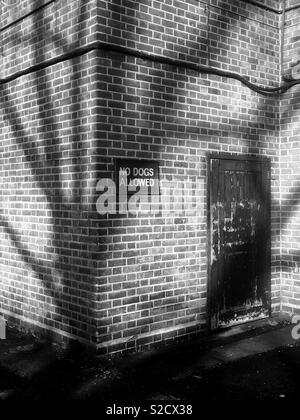 Shadow of tree onto building - Stock Image