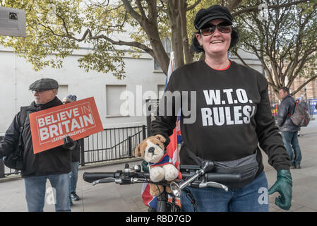 London, UK.  9th January 2019. Protests by stop Brexit group SODEM (Stand of Defiance European Movement) and pro-Brexit campaigners continue opposite Parliament. Most Brexiteers, like this camapigner on a tricycle with a 'WTO Rules!' shirt had come to support Brexit rather than cause trouble. Police still seemed reluctant to act against possible breaches of public order when SODEM protesters were harassed, but there were few if any MPs to be seen. Credit: Peter Marshall/Alamy Live News - Stock Image