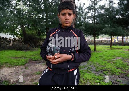 Local child with bird in Hasankeyf , Turkey - Stock Image