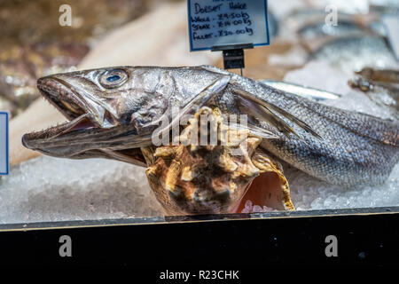A display of Hake fish, on ice, in a fresh food market - Stock Image