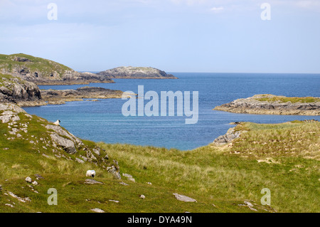 View along the Atlantic coastline of Little Bernera - Stock Image