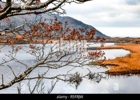 Winter scene, Ladies View, Killarney National Park, County Kerry, Ireland - Stock Image