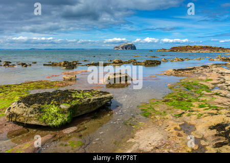 The Bass Rock from Seacliffe Beach.  Near North Berwick, East Lothian, Scotland, UK - Stock Image