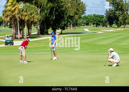 Miami Beach Florida Normandy Shores Public Golf Club Course Battle at the Shores NCAA Division II Tournament varsity student golfer golfers playing ma - Stock Image