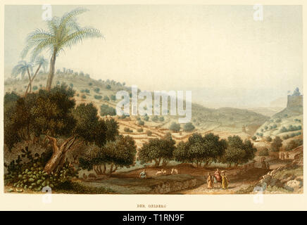 Middle East, Israel, Jerusalem, Mount of Olives, coloured steel engraving by Poppel and Kurz after Halbreiter, around 1861. , Artist's Copyright has not to be cleared - Stock Image