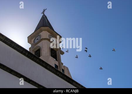 Pigeons in flight from the clock tower of the chapel of Nuestra Senora de Bonanza in El Paso, La Palma, Canary Islands, Spain - Stock Image