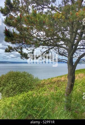 Machrie, Isle of Arran, Scotland - Stock Image