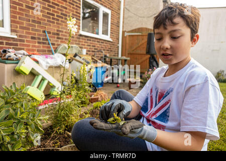 A young boy outside gardening, wearing gloves and sat on the floor. - Stock Image