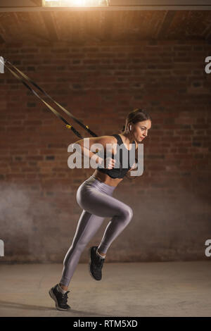 Sportive caucasian women training arms with trx fitness straps in the gym doing Sprinter Start exercise, muscles of upper body chest shoulders pecs an - Stock Image