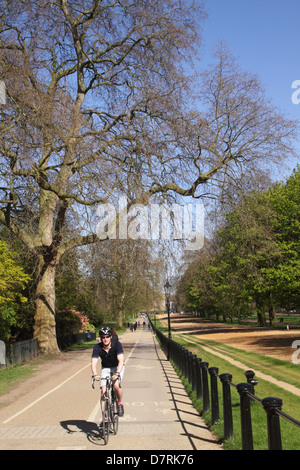 Bicyclist at Hyde Park London - Stock Image