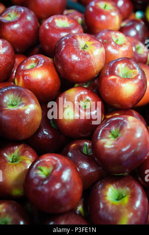 Vertical shot of healthy and shine red apples at the Farmer's market - Stock Image